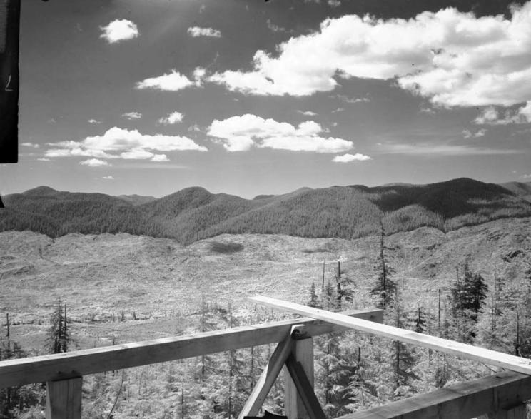 "BC Archives. Item I-71998. ""View from Log forest lookout W shot 7."""